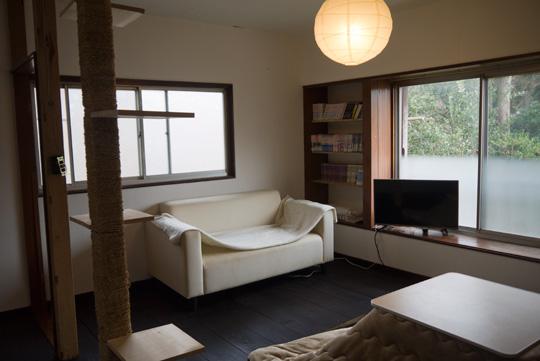 現在のリビングルーム。廊下との壁を取り払っただけで、もとが6畳の部屋だったとは思えないほど広い空間になりました